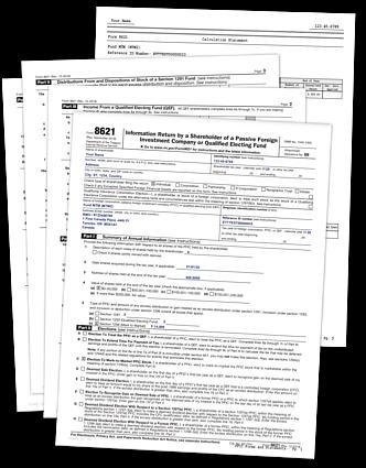 PFIC-PRO Form 8621 Sample